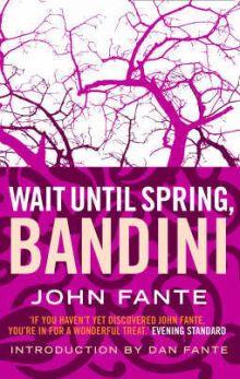 Подожди до весны, Бандини